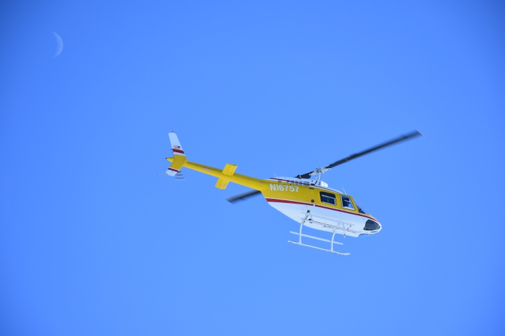 dapl-chopper-with-moon